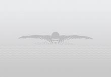 Мусобиқаи шиноварӣ дар ВКД таҳти шиори «Рушди сайёҳӣ - пешрафти кишвар»